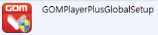 GOM Player plus installer icon