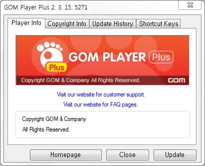 GOM Player plus Information Window